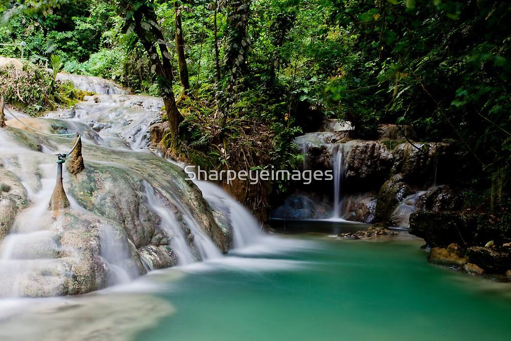 Calming flowing waterfall and pool, Vanuatu, South Pacific Ocean by Sharpeyeimages