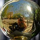 Me in a Shiny Railing Ornament Sphere by TJ Baccari Photography