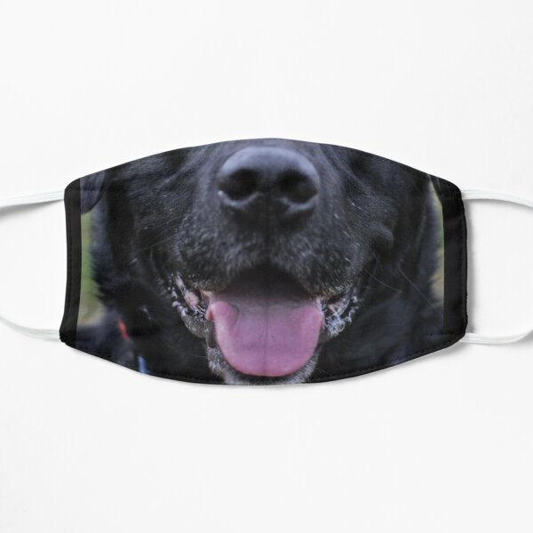 Black Labrador Mask Flat Mask