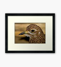 Thick Knee Framed Print