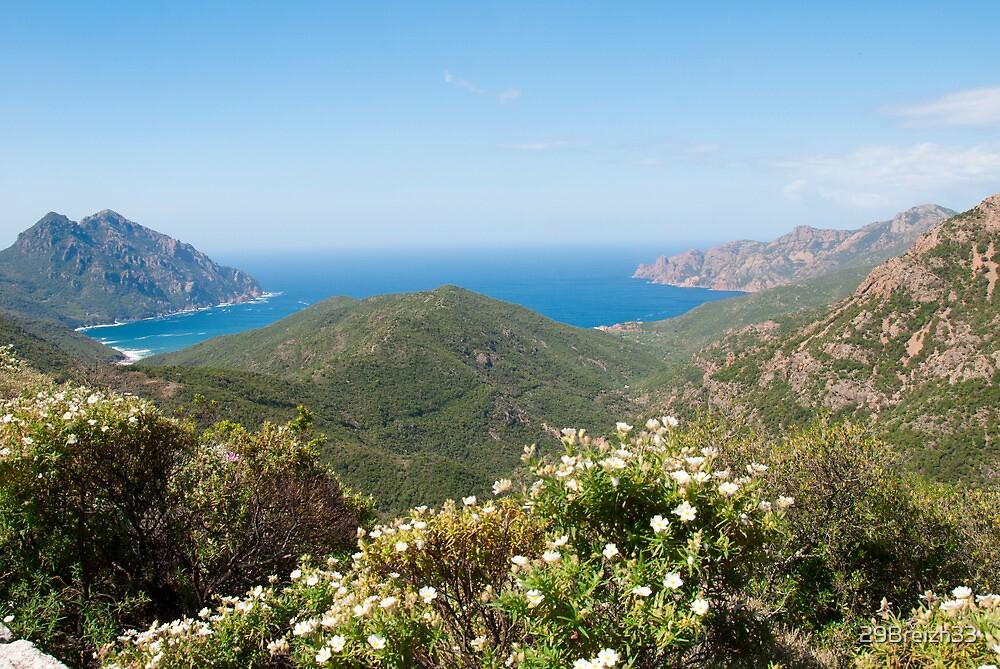 Corsica, the scenic road    by 29Breizh33