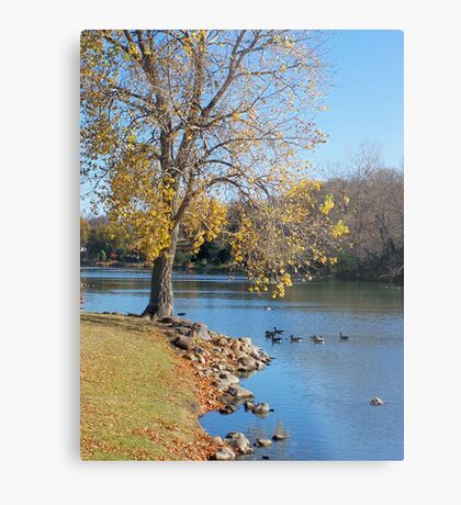 Tranquil Moment Metal Print