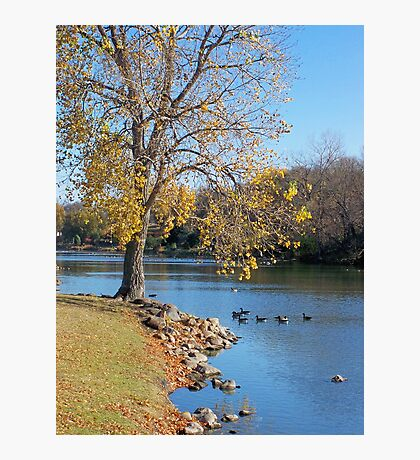 Tranquil Moment Photographic Print