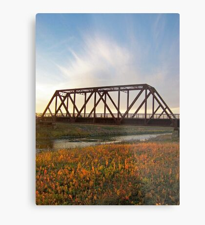 Auburn Afternoon Metal Print