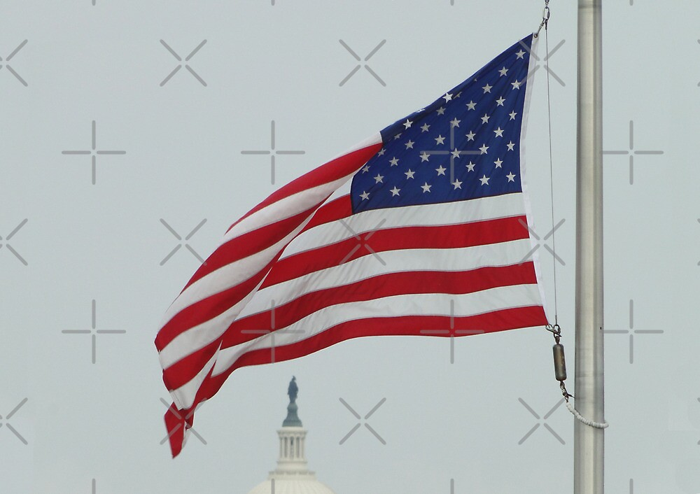 Freedom Under The Stars And Stripes by Barrie Woodward