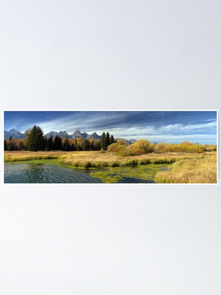 Alternate view of Golden Marsh Grasses, Teton Panorama Poster