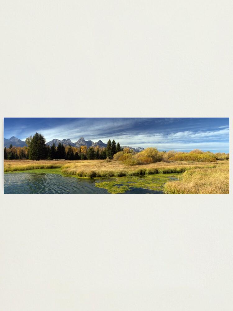 Alternate view of Golden Marsh Grasses, Teton Panorama Photographic Print