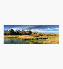 Golden Marsh Grasses, Teton Panorama Photographic Print