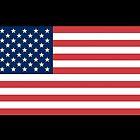 USA Flag by crunchyparadise