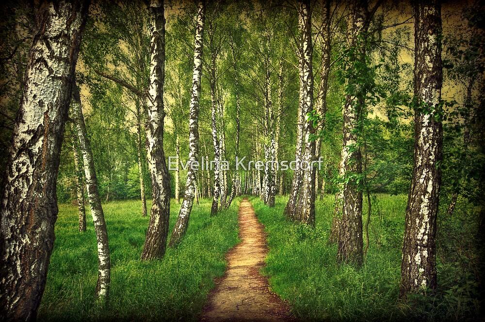 Find Your Way Back Home by Evelina Kremsdorf