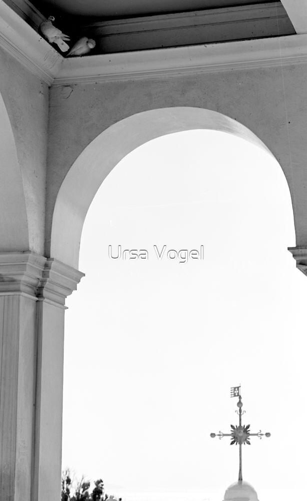 1988 - refuge by moyo