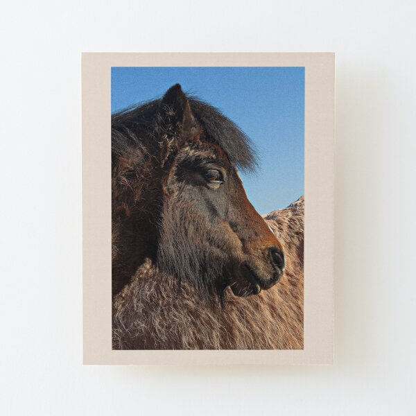 Horse's head and all that texture in black and white  Wood Mounted Print