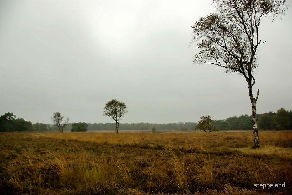 On the big, silent heath... by steppeland