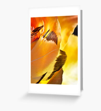 Wings of Aries Greeting Card