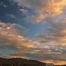 Appalachian Orange - Sperryville, VA by Matthew Kocin