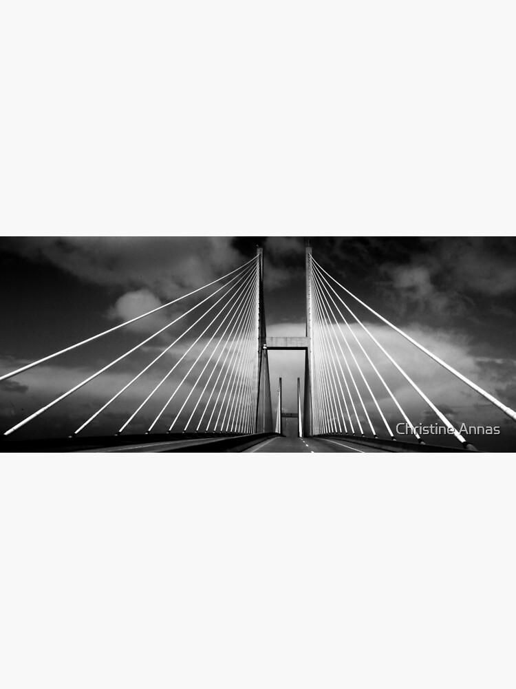 M. E. Thompson Memorial Bridge by 2Bricks