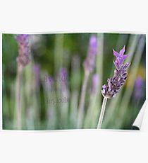 Textured Lavender Poster