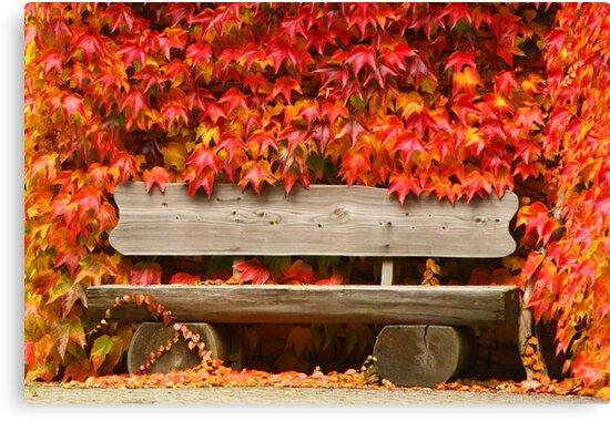 Take a Seat and Enjoy by karina5