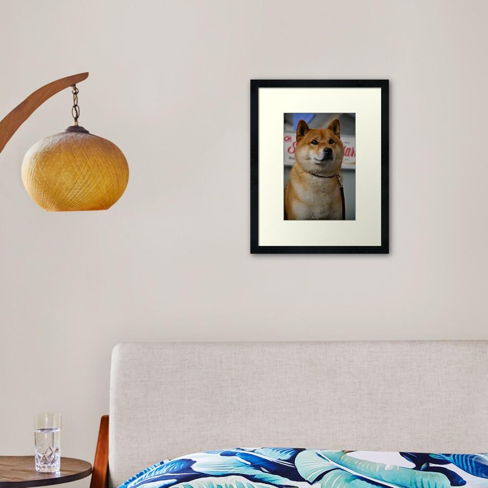 Dog (show) your pride Framed Art Print