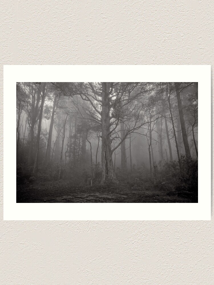 Alternate view of Gather in the mist - Marysville Art Print