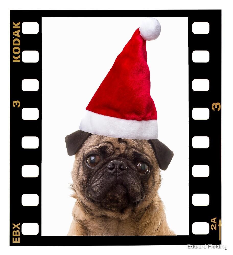 Santa Pug by Edward Fielding