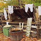 Laundry day by Penny Fawver