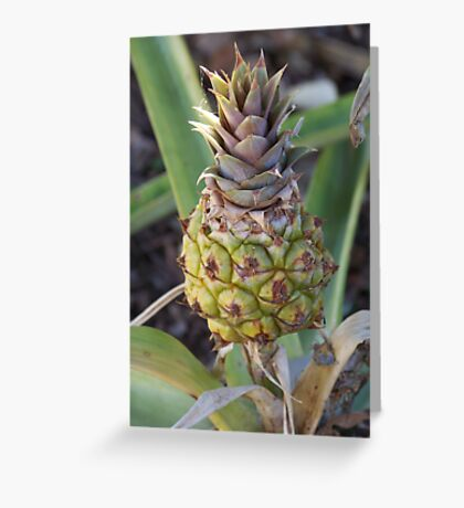 Baby Pineapple Greeting Card