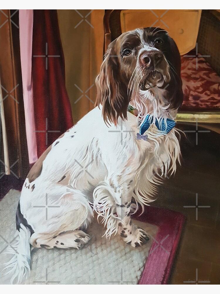 Springer Spaniel portrait by EmilyBickell