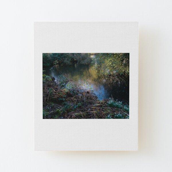 Light on the lake Wood Mounted Print