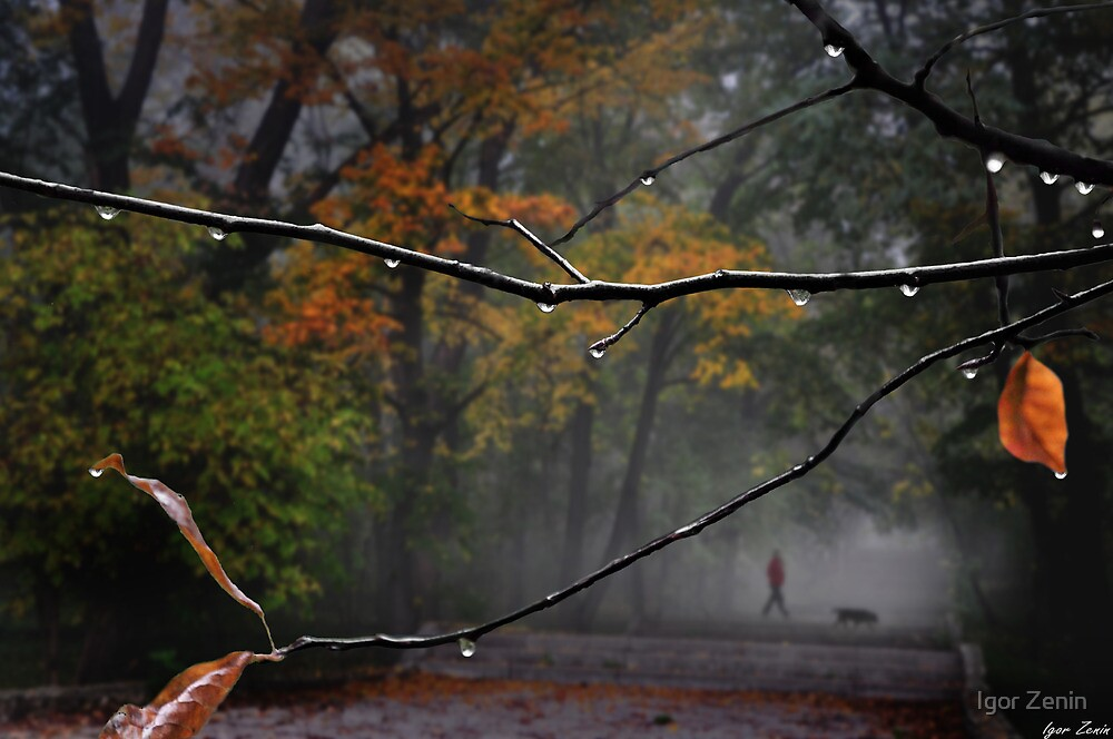 Park Stroll by Igor Zenin
