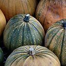 Pumpkins, Pumpkins! by LydiaBlonde