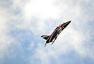 BAE Hawk T1A XX278 by Nigel Bangert