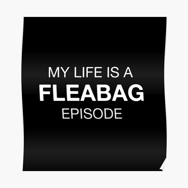 My life is a FLEABAG episode Poster