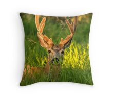 Grassy Muley Throw Pillow