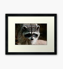 Hi, I'm Your New Neighbor Framed Print