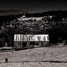 Old Huon Hut by Ron C. Moss