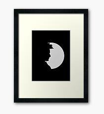 tenth doctor shadow Framed Print