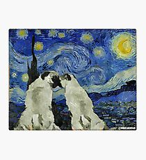 Starry Night Pugs Photographic Print