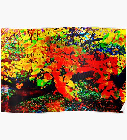 I recall, Central Park in Fall Poster