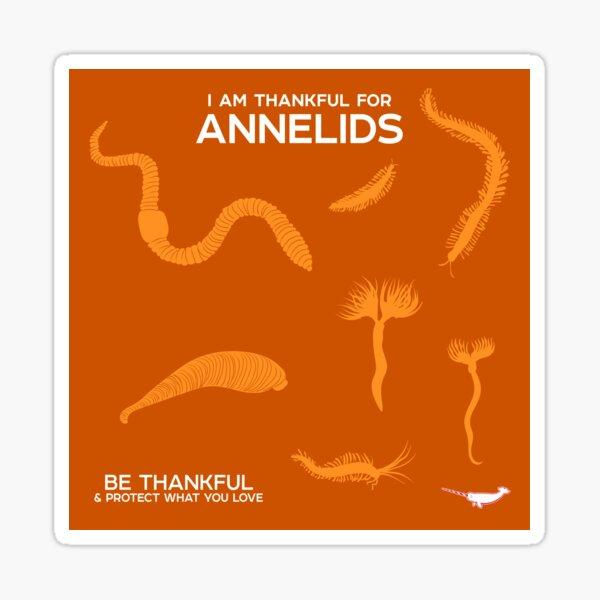 I Am Thankful For Annelids Sticker
