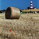 Happisburgh lighthouse by Mark Bunning