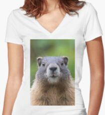 Marmot Women's Fitted V-Neck T-Shirt
