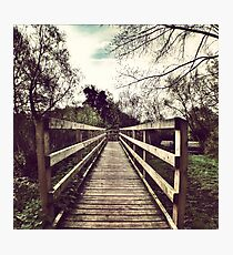The Way Forward Photographic Print