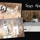 Dogs Afield by Sandra Hobbs