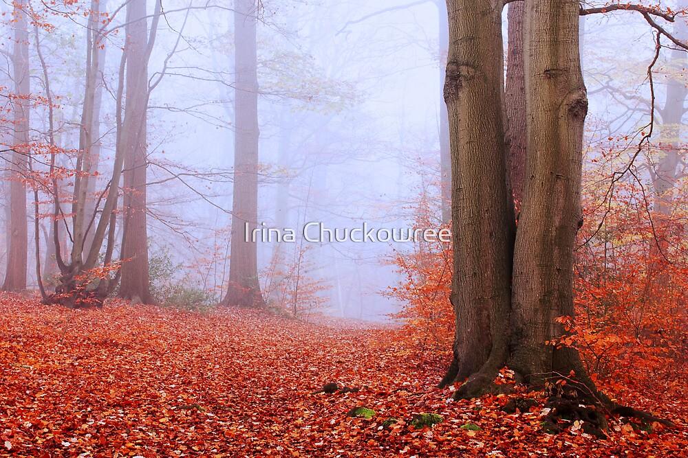 November by Irina Chuckowree