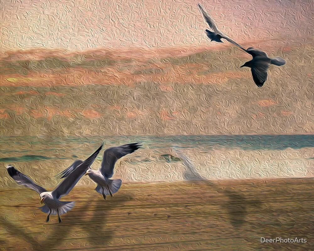 Seabirds At Setting Sun by DeerPhotoArts