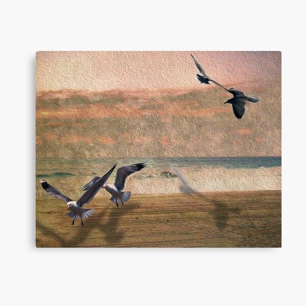 Seabirds At Setting Sun Canvas Print