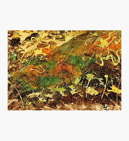 Forest Veil Photographic Print