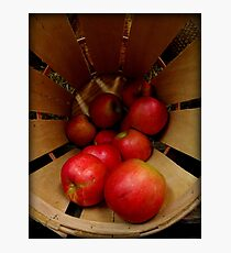 Apples in Barrel Photographic Print