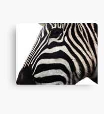 side zebra Canvas Print